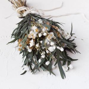 Ramo Melani - olivo